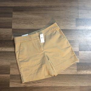 Loft Size 2 Riviera shorts NWT